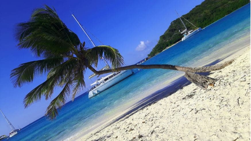 Tobago Cays – w oczekiwaniu na lobsterową ucztę